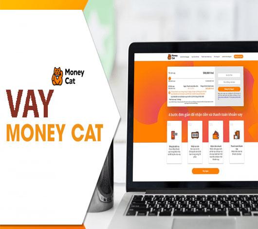 Vay Money Cat